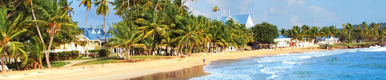Caribbean Tobago